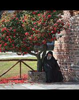 Фотографии снятые на Святой горе Афон
